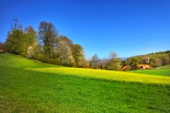 Schöniberg Richtung Gächliwil
